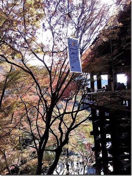 15-12-01-12-38-29-343_photo
